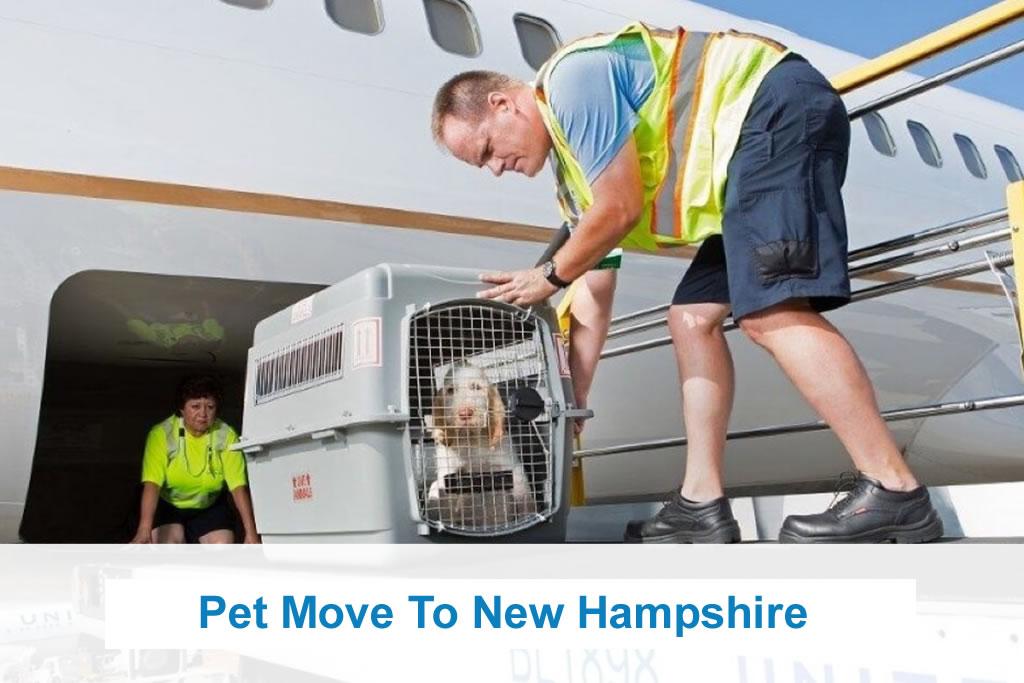 Pet Move New Hampshire