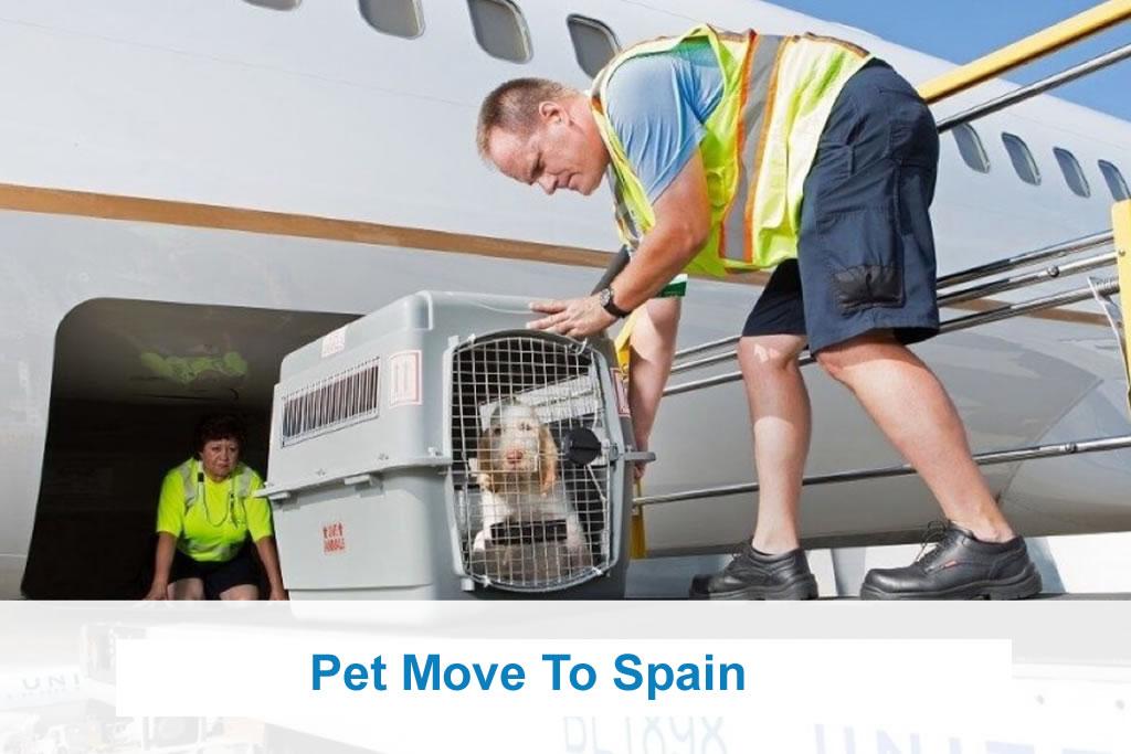 Pet Transport To Spain