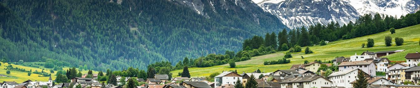 Pet Transport To Switzerland